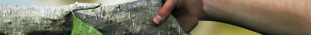 handen-duurzaamheid