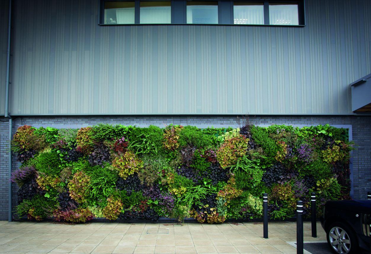 Livepanel outdoor groene gevel - Outs idee open voor levende ...